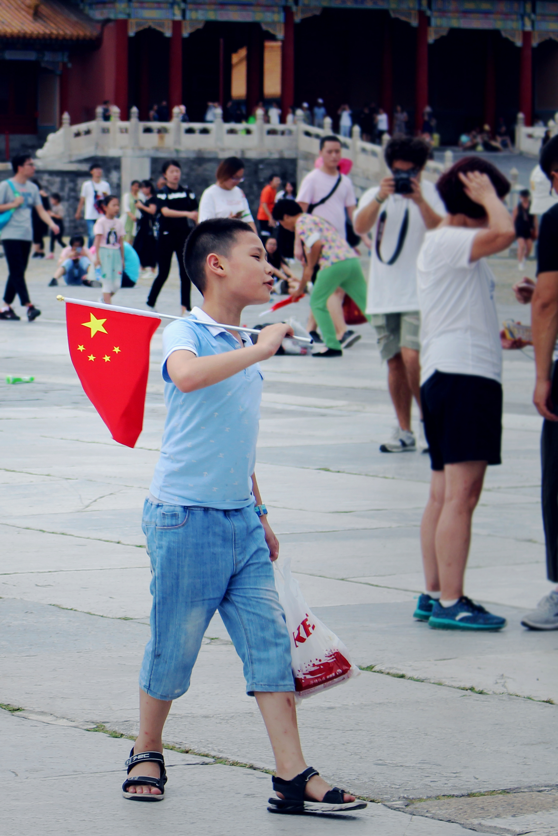 Photo of Boy with Flag