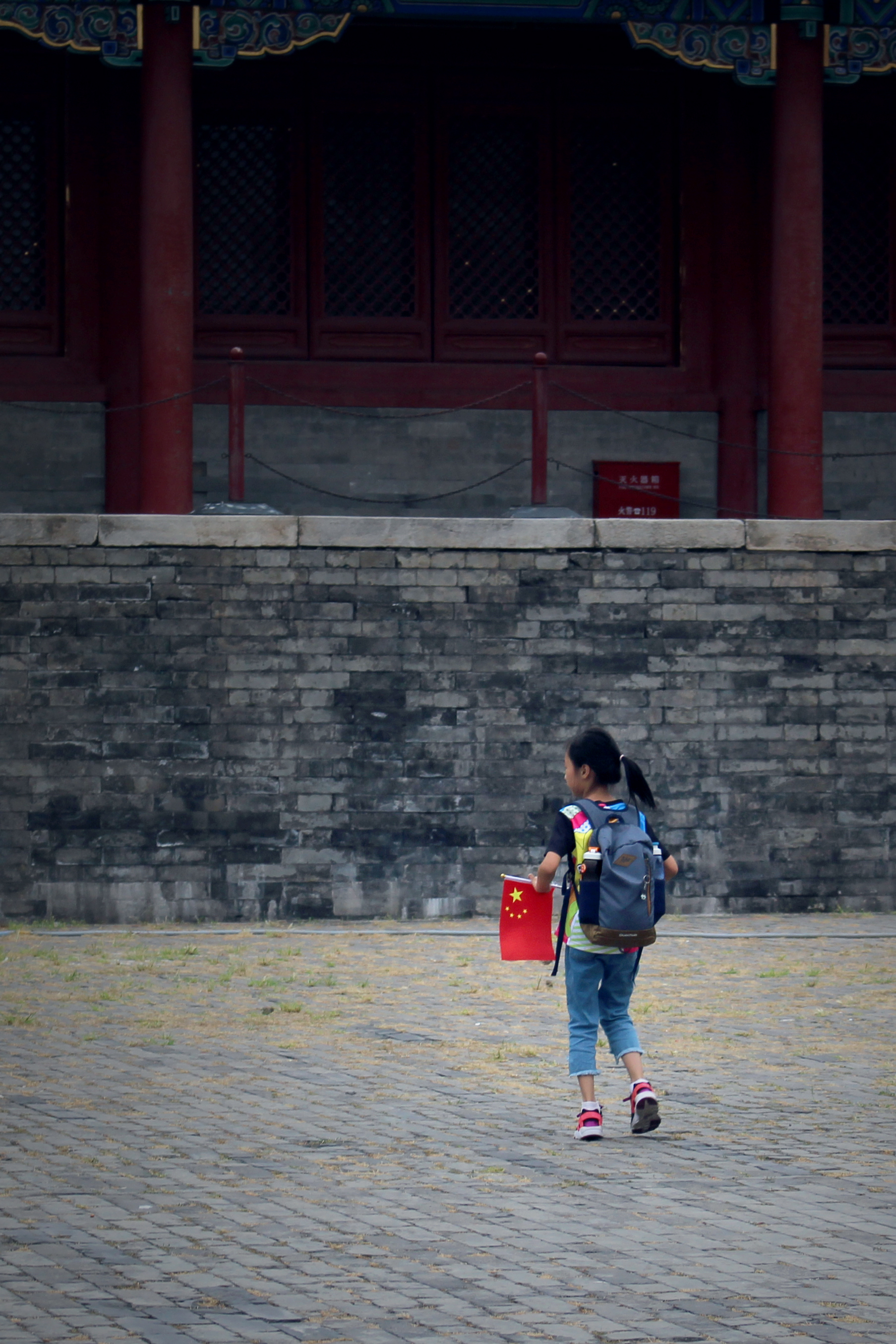 Photo of Kid with Flag